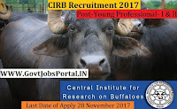 Central Institute for Research on Buffaloes Recruitment 2017– Young Professional- I & II