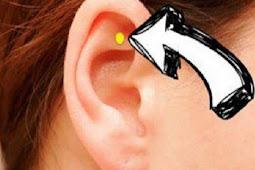 Stabilkan Fungsi Tubuh dengan Memijat Titik Ini di Telinga