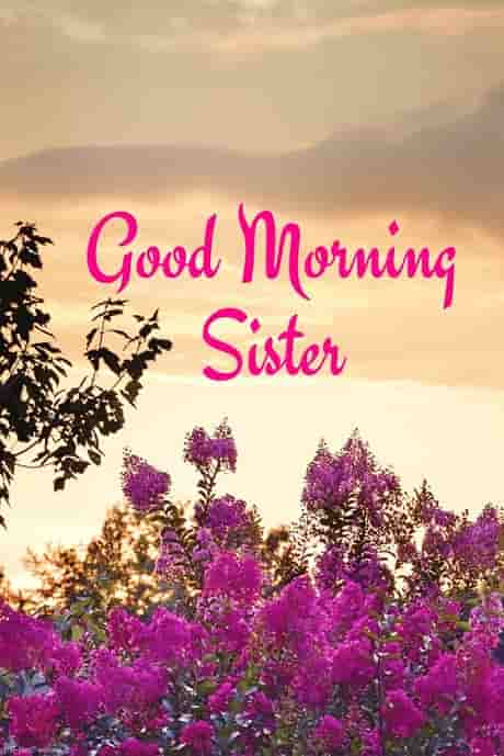 good morning sister image