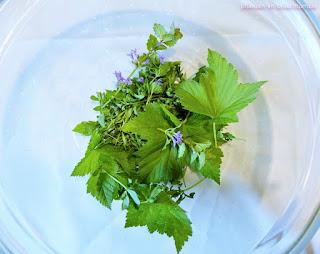 Alte Rezepte für Mai-Trunk, natürliches Gesundheits-Mittel