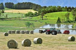 牧草収穫開始  福井県奥越高原牧場