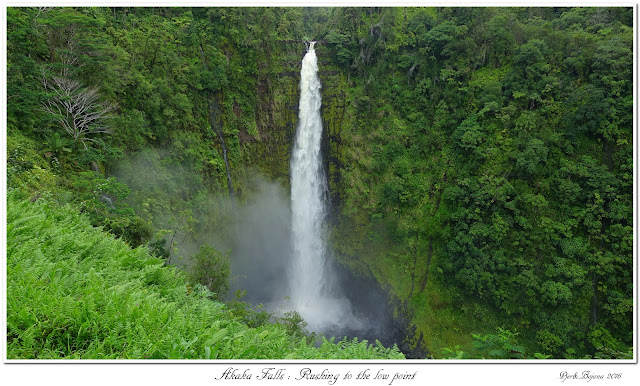 Akaka Falls: Rushing to the low point