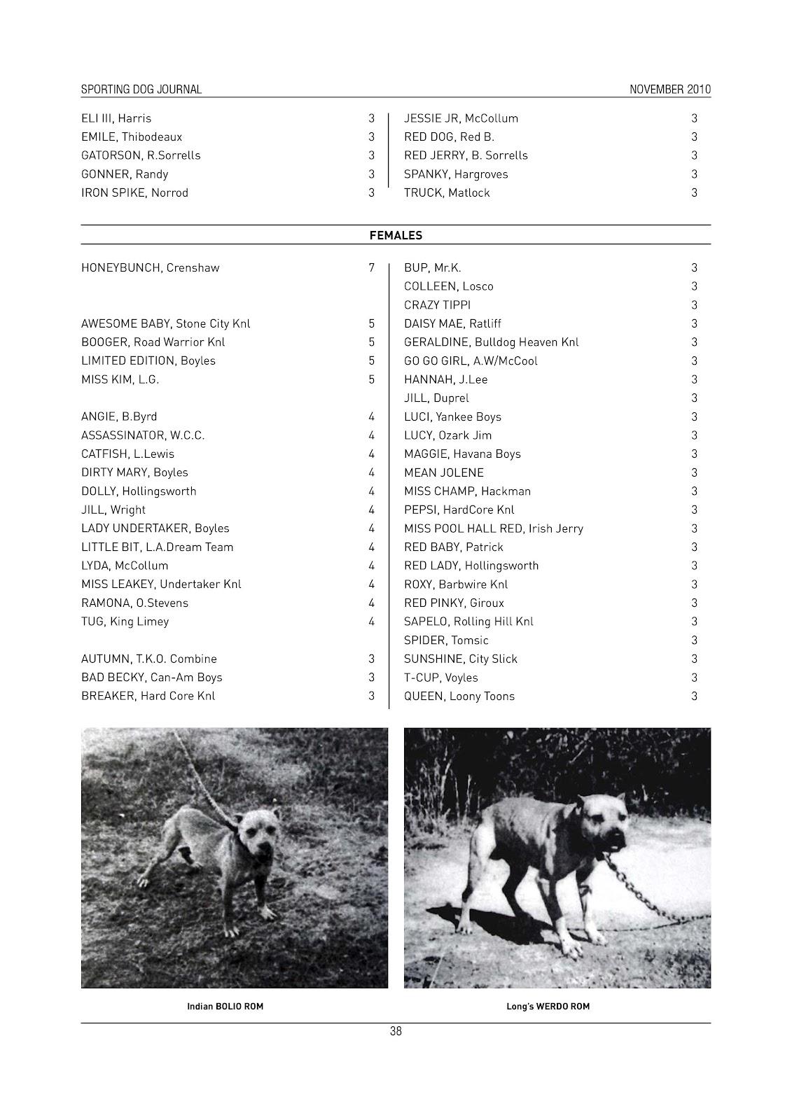 SPORTING DOG JOURNAL NOVEMBER/2010 | SPORTING DOG NEWS