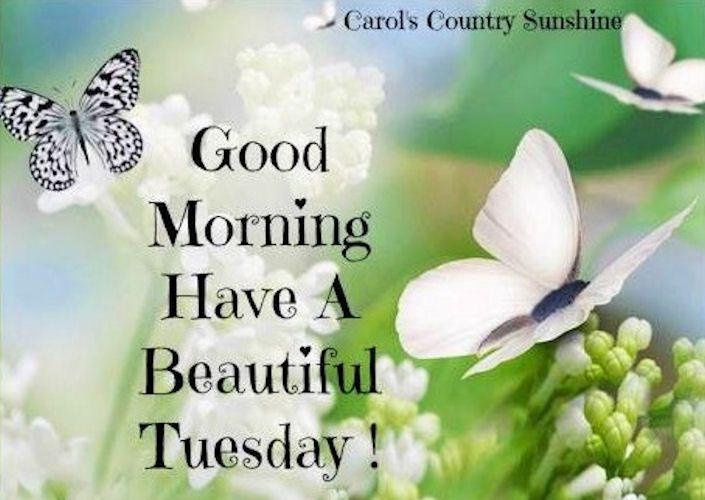 ImagesList.com: Happy Tuesday 5
