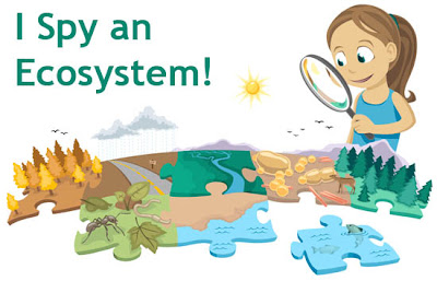 ecosystem resources, ecosystem classroom resources, ecosystems for kids