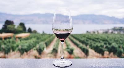 El turismo en la ruta del vino
