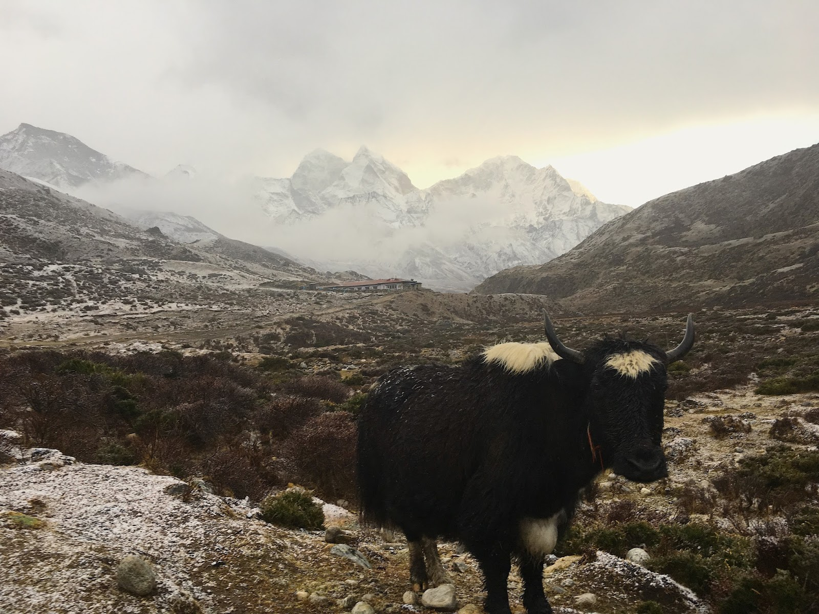 Planning your trek to Everest Base Camp? Read more about what no one tells you about hiking to the base of the highest mountain in the world!