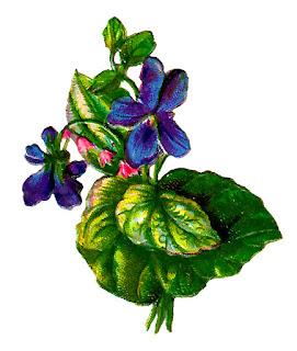 flower violet image digital download scrapbooking