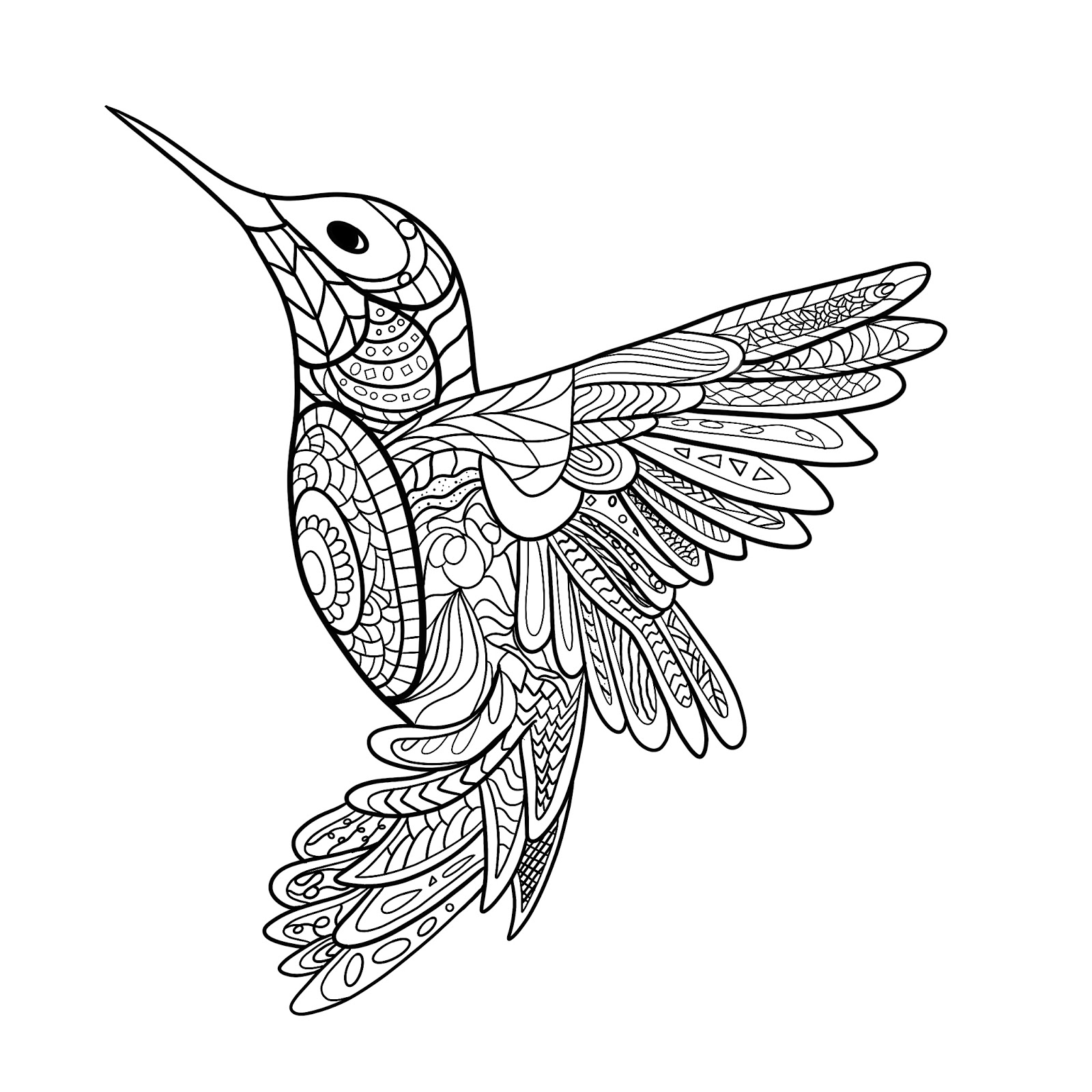 A Hummingbird Mandala Is Waiting To Be Colored By You