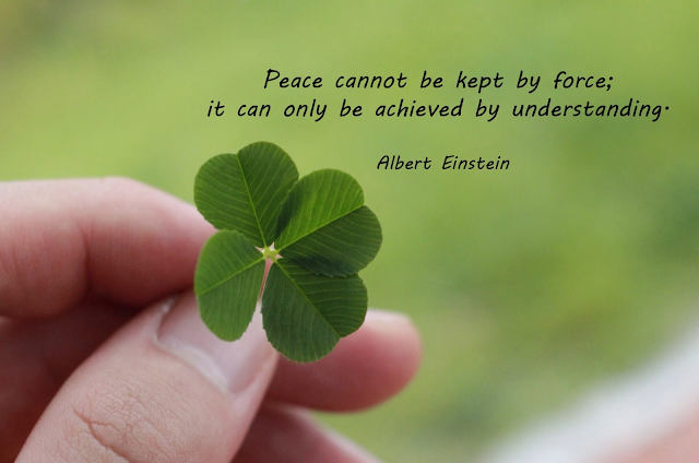 Albert Einstein Peace Quotes Wallpaper Photo Image