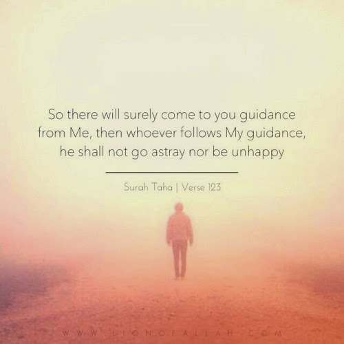 What if you follow Allah guidance