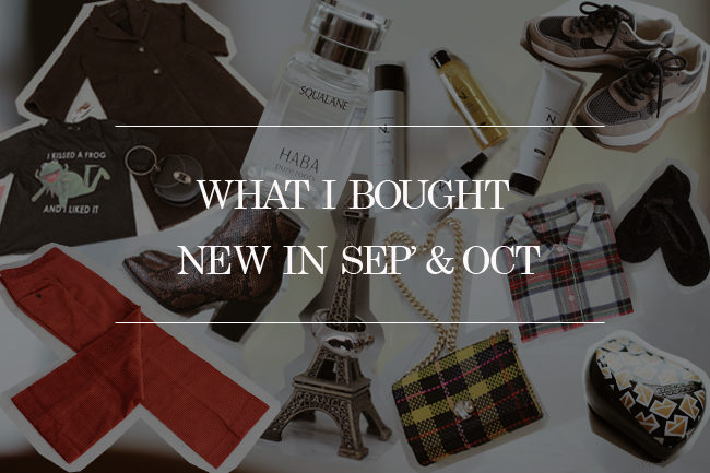 Japanese Fashion Blogger,MizuhoK, New in Sep. and Oct,2018