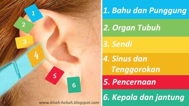 Berbagai Jenis Penyakit yang Bisa Kamu Sembuhkan dengan Tehnik Jepit Telinga