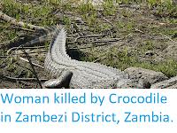 http://sciencythoughts.blogspot.co.uk/2018/03/woman-killed-by-crocodile-in-zambezi.html