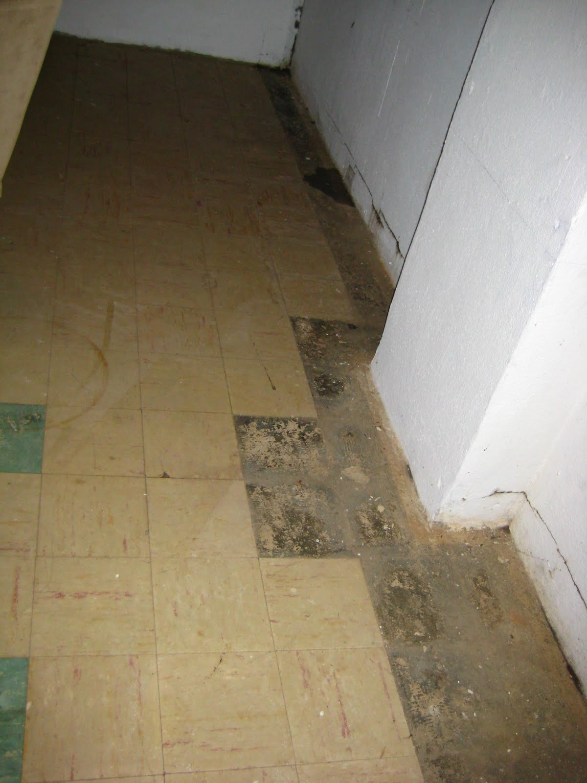 Lighting Basement Washroom Stairs: O-Town Diary: Asbestos Abatement. Or, Why Our House Smells