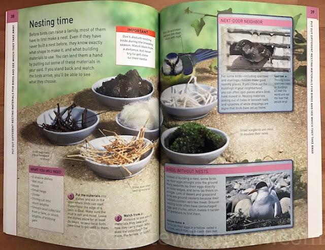 birdwatcher dk canada book