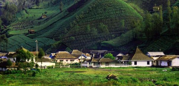 Pengertian Desa Beserta Ciri-Ciri, Unsur, Fungsi, Klasifikasi, dan Pemerintah Desa Lengkap