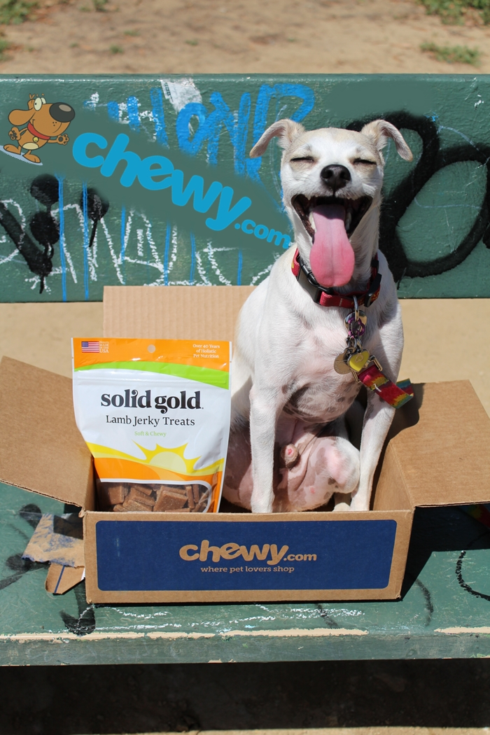 Solid Gold Lamb Jerky Treats from Chewy.com Review