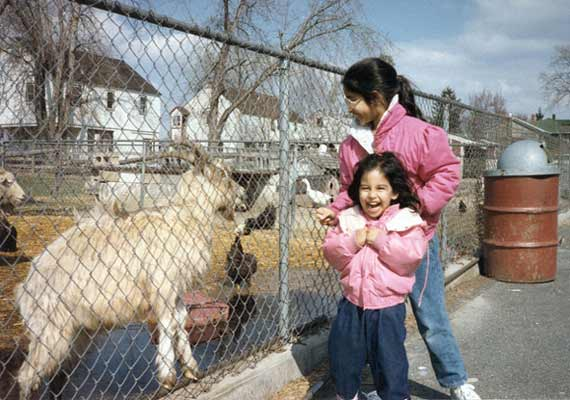 Teasing, feeding or disturbing the animals in a zoo is an offence punishable by a fine of Rs. 25000 or imprisonment of up to three years or both. Section 38J, Wildlife (Protection) Act, 1972 lawescort