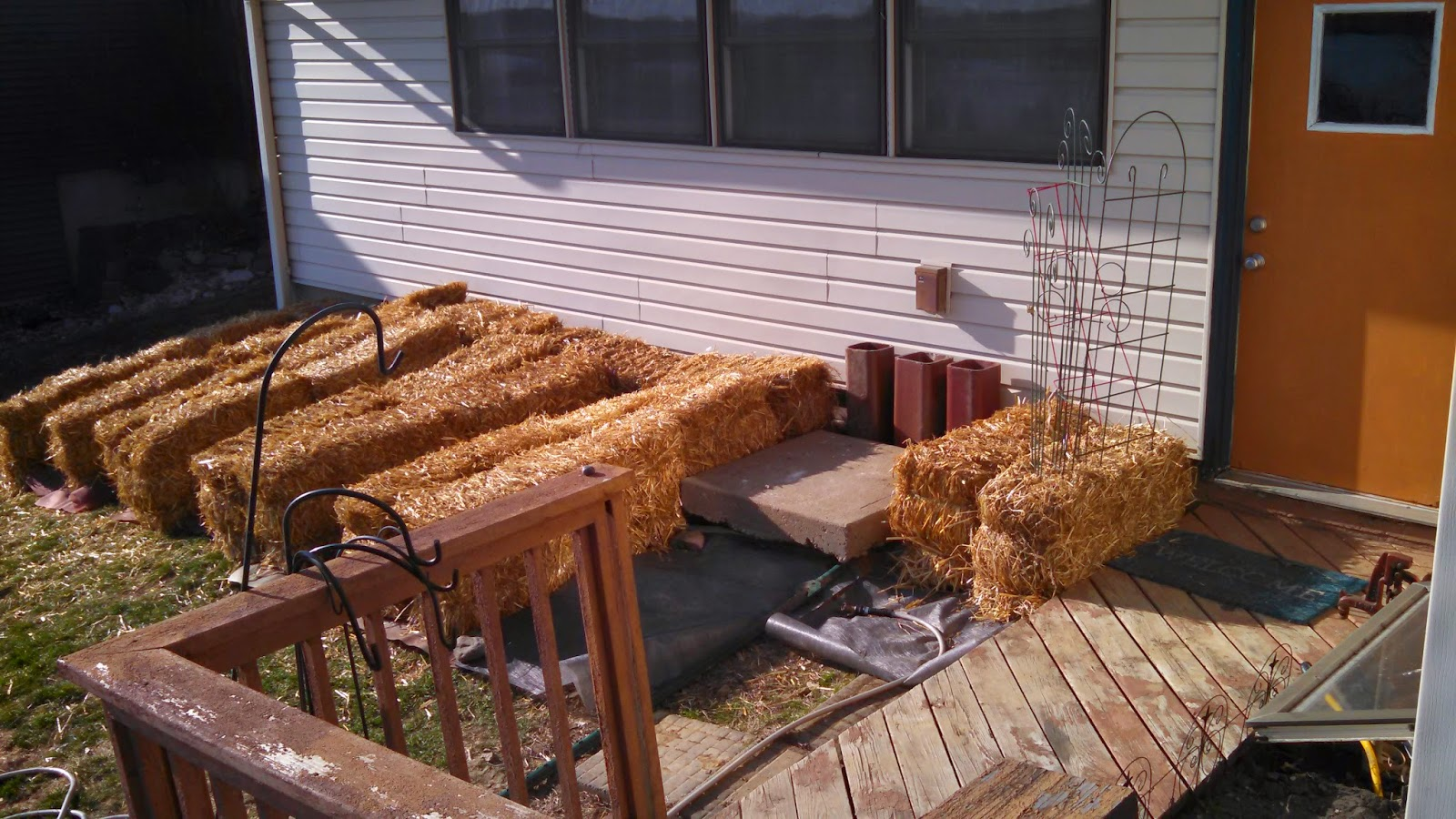 Straw Bale Garden- Rough Layout Before Staking the Bales