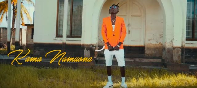 Fama - Kama Namuona Video