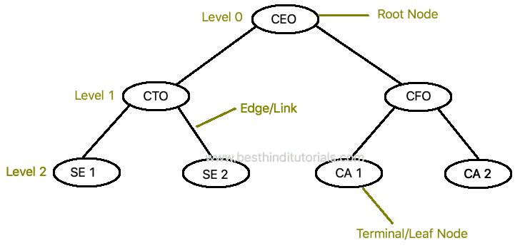 Data Structures in Hindi - Tree - Best Hindi Tutorials