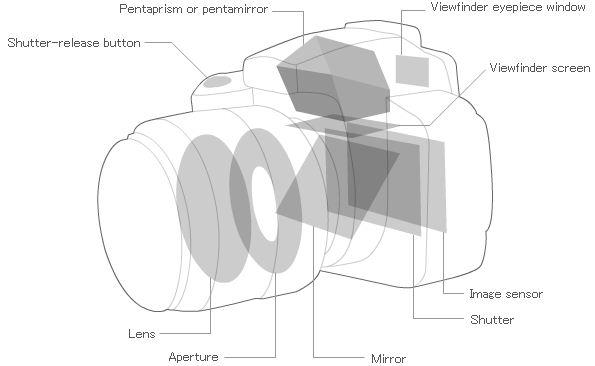 DSLR Camera Construction, http://imaging.nikon.com/lineup/dslr/basics/01/01.htm