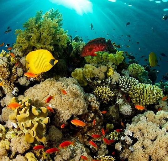 6 Tempat Wisata Manado Terkenal Paling Indah