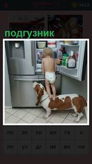 открытая дверь холодильника и стоит ребенок в подгузниках с собакой