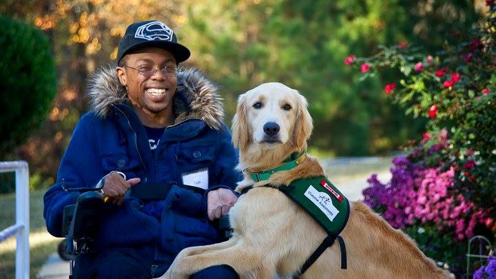 Perros de ayuda a personas con convulsiones