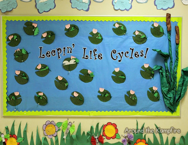 Frog life cycle writing craft and bulletin board