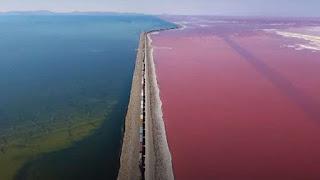 Τρένο διασχίζει μία λίμνη που είναι μισή μπλέ και μισή ροζ