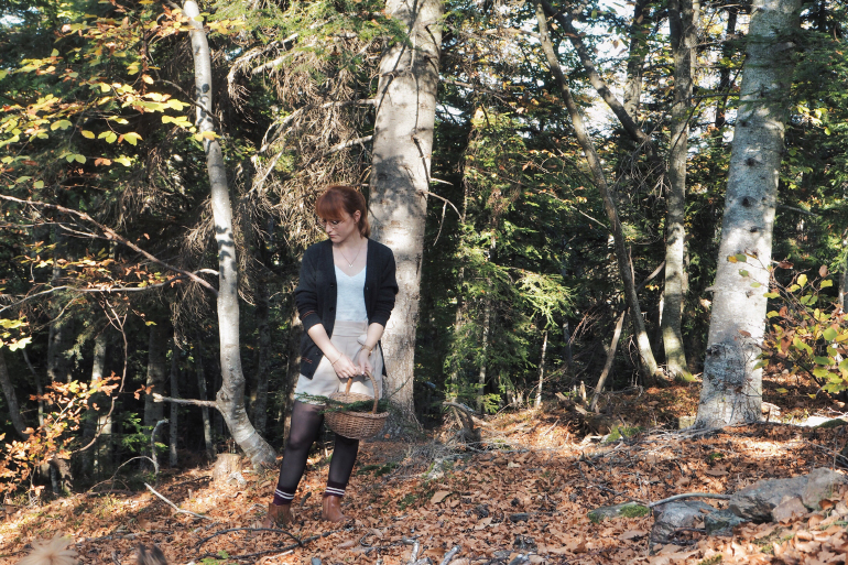 Balade en forêt en automne