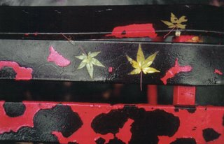 Aveigaile Ernst Haas Vs Jim Hodges Peeling Paint On Iron