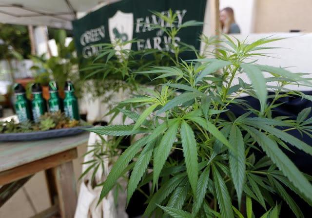 Marijuana delivered to your door: Massachusetts regulators approve home delivery, cannabis cafes