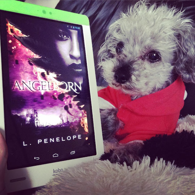 Murchie, clad in a tiny pink hoodie, lies beside a white Kobo with Angelborn's cover on it. The purple-toned cover features a young black woman's face superimposed over a large, black-feathered wing.