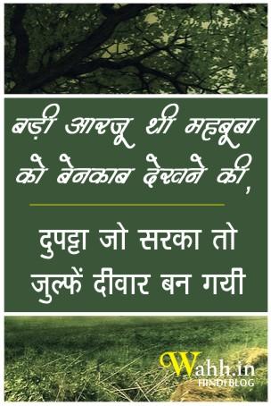 Julfe-Deewar-Ban-Gayi-shayari