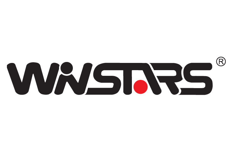 Winstars WS-UG19M1 USB 2.0 to Video Adapter Driver Download