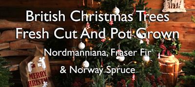 http://prestonbissettnurseriesandcountryshop.blogspot.com/2018/11/british-christmas-tree-prices-2018.html