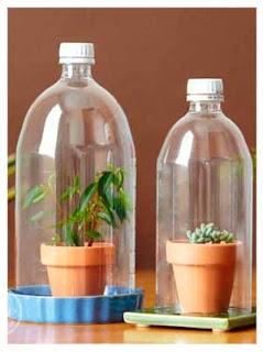 terrario con botella