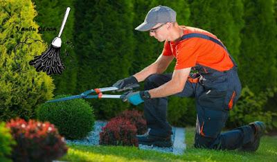 شركة تنظيف حدائق بينبع, تنظيف حدائق بينبع