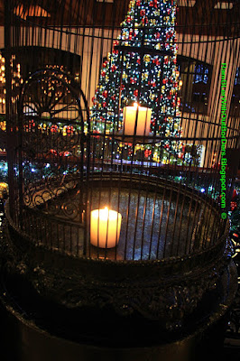 candle in birdcage