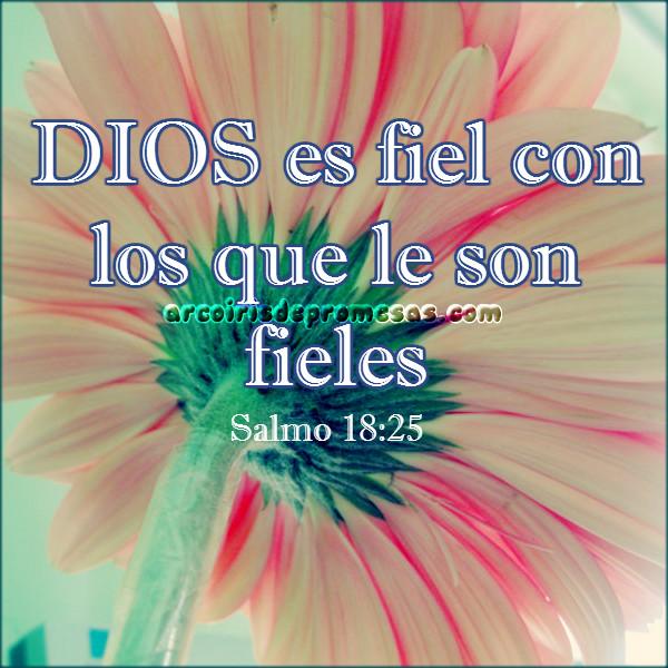 dios es fiel con los justos