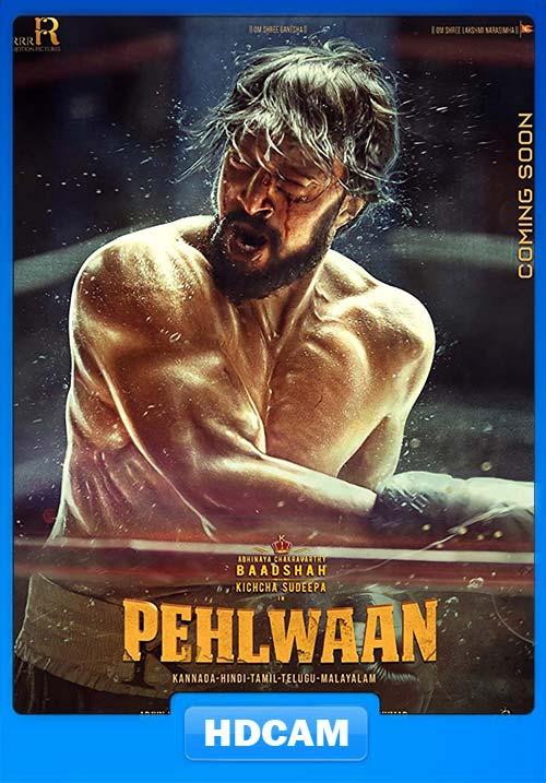 Pailwaan 2019 Hindi 720p PreDVD x264 | 480p 300MB | 100MB HEVC Poster