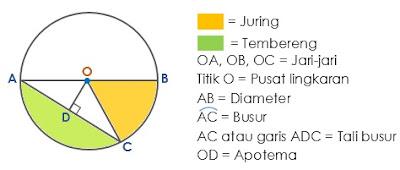 Pengertian dan Unsur-unsur Lingkaran Lengkap dengan Penjelasannya