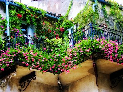 balcony garden idea