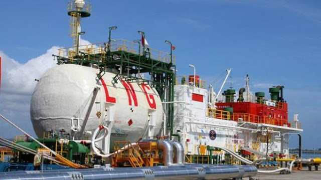 Ini Keanehan Sikap Pemerintah Yang Keukeuh Impor LNG