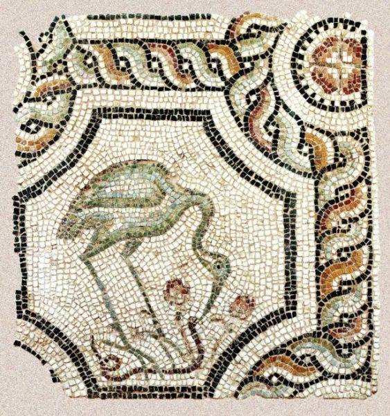 Πελαργός ραμφίζει φίδι, παλαιοχριστιανική Βασιλική Ιλισσού Αθήνας, ψηφιδωτό (Βυζαντινό Μουσείο), 5ος αιών.