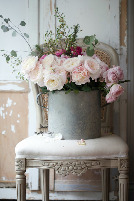 roses in zinc bucket on chair