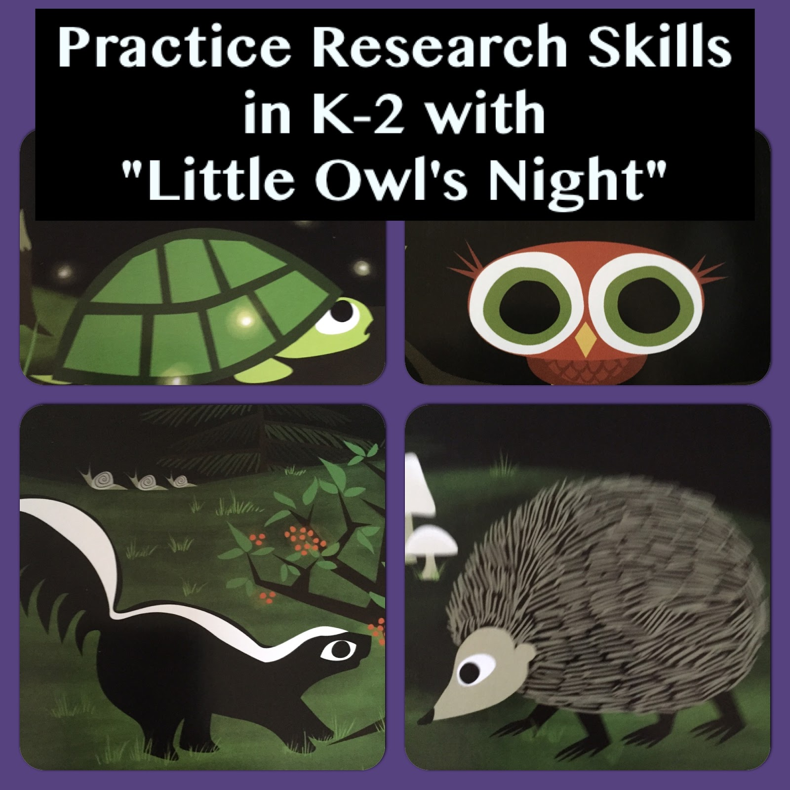 My Life In Picture Books Little Owl S Night By Divya Srinivasan